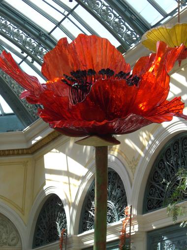 Vegas Margaret Cho Pics